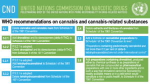 December 2020: a crucial month for cannabis